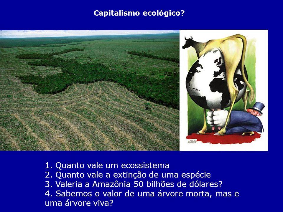 Capitalismo ecológico.1. Quanto vale um ecossistema 2.