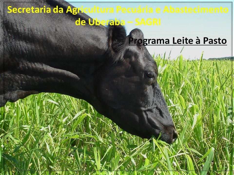Objetivos Principais Melhoria na qualidade das pastagens Aumento do número de animais (> taxa de lotação) Aumento da Produção Leiteira Melhoria na qualidade genética Diversificação de atividades