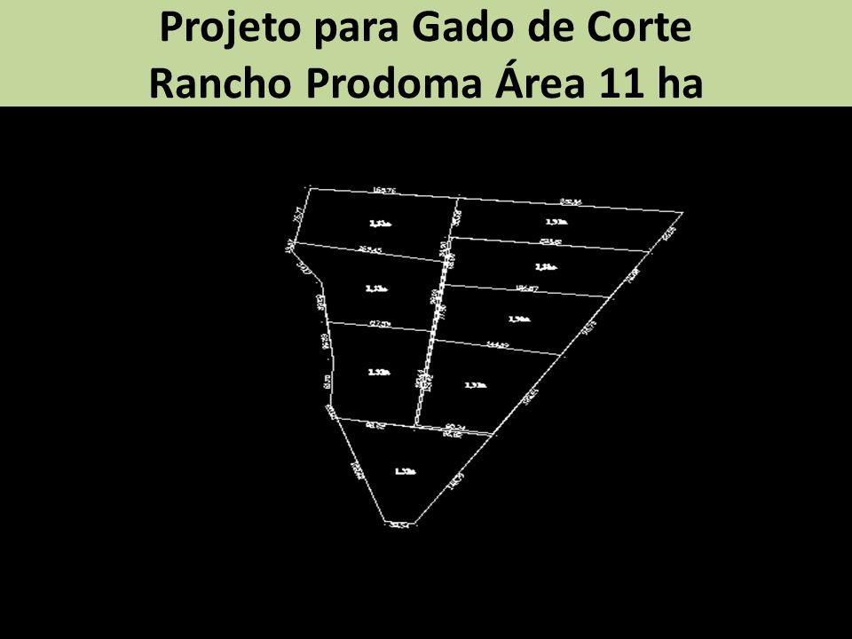Projeto para Gado de Corte Rancho Prodoma Área 11 ha
