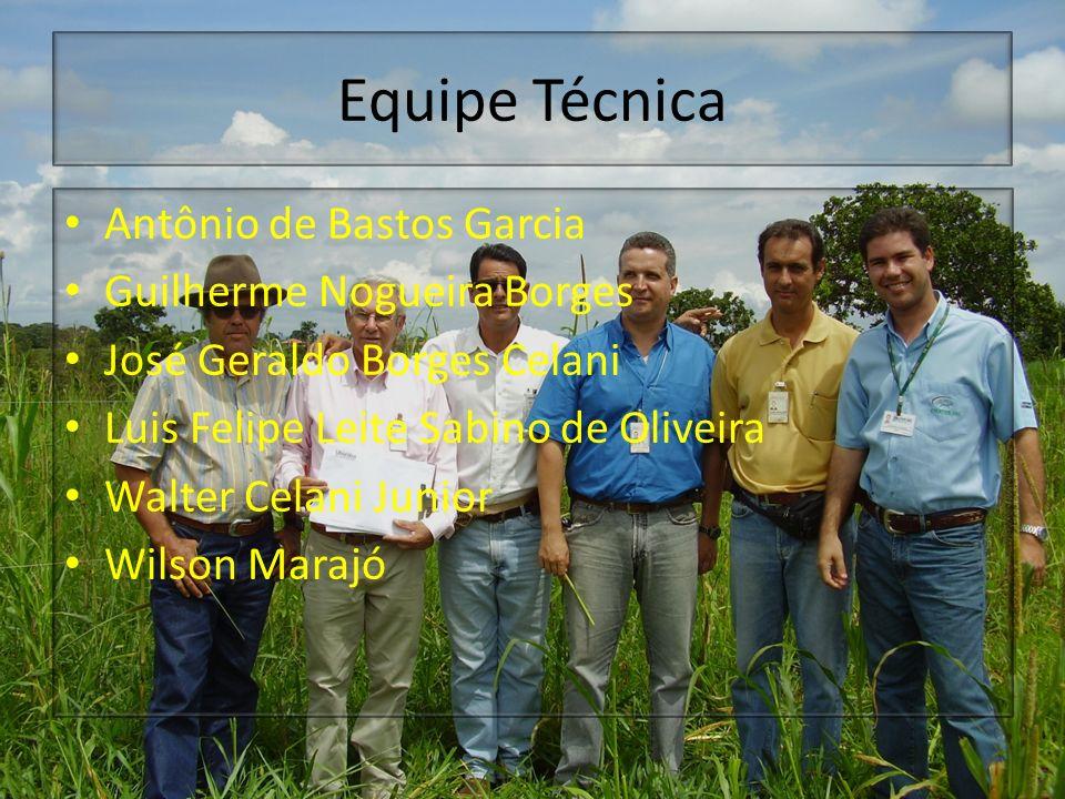 Equipe Técnica Antônio de Bastos Garcia Guilherme Nogueira Borges José Geraldo Borges Celani Luis Felipe Leite Sabino de Oliveira Walter Celani Junior
