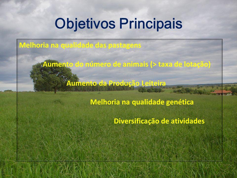 Objetivos Principais Melhoria na qualidade das pastagens Aumento do número de animais (> taxa de lotação) Aumento da Produção Leiteira Melhoria na qua