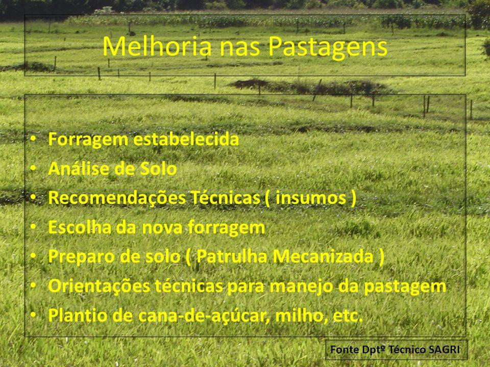Melhoria nas Pastagens Forragem estabelecida Análise de Solo Recomendações Técnicas ( insumos ) Escolha da nova forragem Preparo de solo ( Patrulha Me