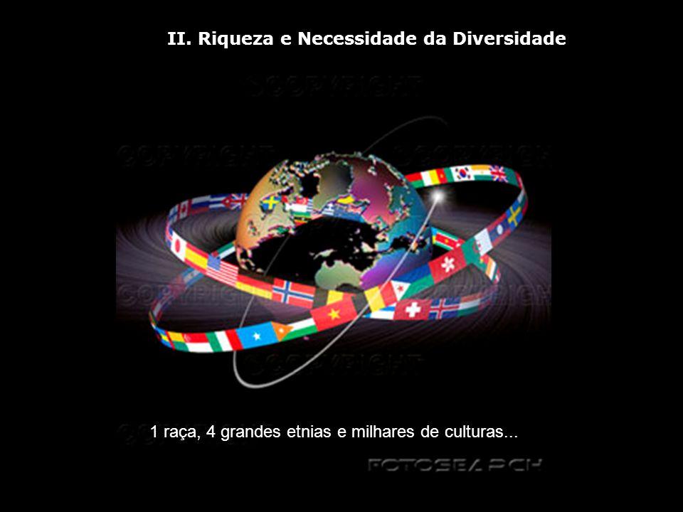 II. Riqueza e Necessidade da Diversidade 1 raça, 4 grandes etnias e milhares de culturas...