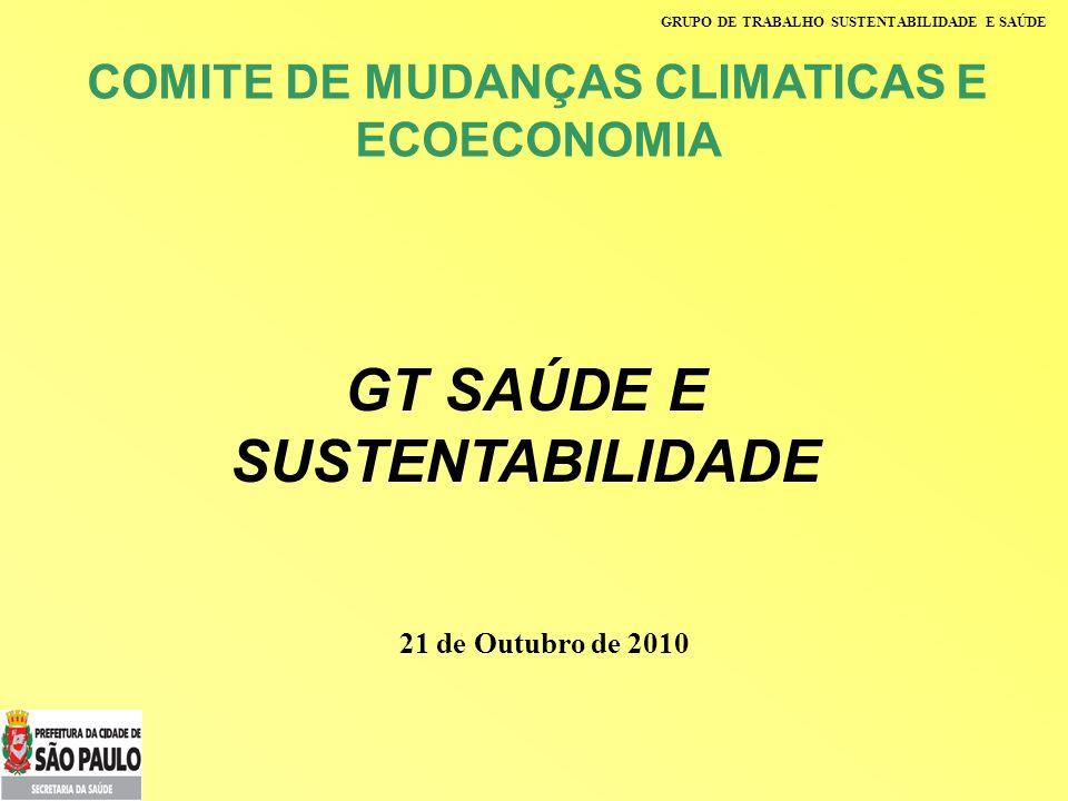 GRUPO DE TRABALHO SUSTENTABILIDADE E SAÚDE GT SAÚDE E SUSTENTABILIDADE COMITE DE MUDANÇAS CLIMATICAS E ECOECONOMIA 21 de Outubro de 2010