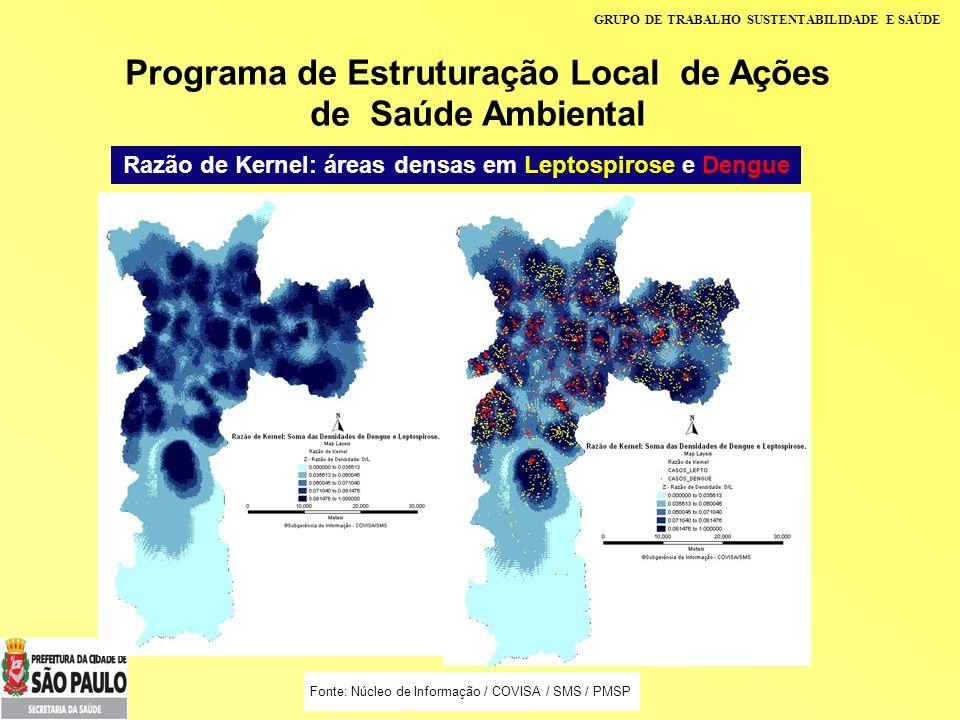 GRUPO DE TRABALHO SUSTENTABILIDADE E SAÚDE Programa de Estruturação Local de Ações de Saúde Ambiental Razão de Kernel: áreas densas em Leptospirose e