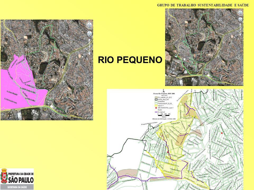 GRUPO DE TRABALHO SUSTENTABILIDADE E SAÚDE RIO PEQUENO