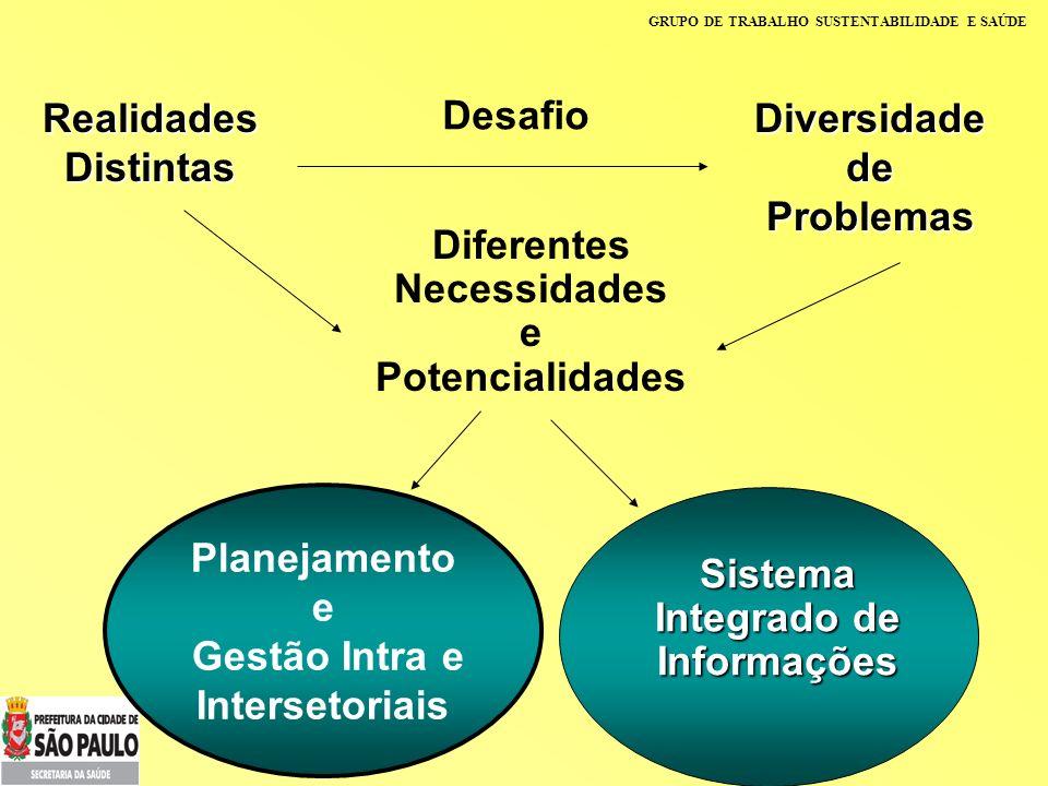 GRUPO DE TRABALHO SUSTENTABILIDADE E SAÚDE Desafio Realidades Distintas Diversidade de Problemas Diferentes Necessidades e Potencialidades Planejament