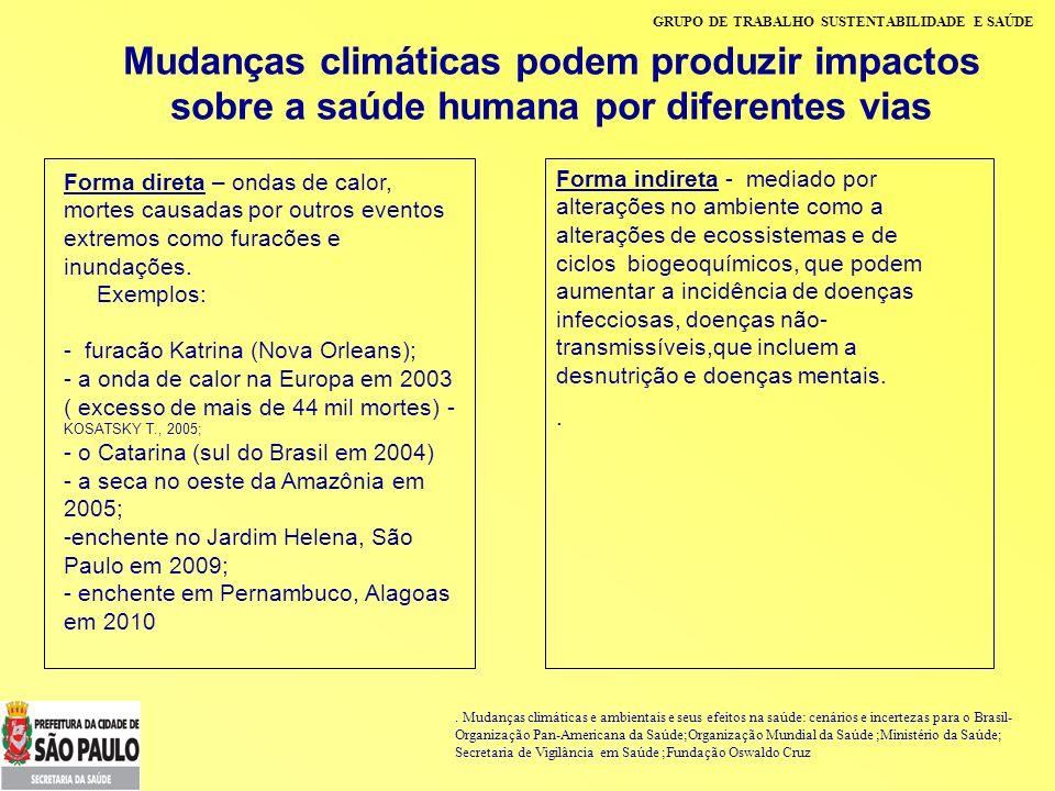 GRUPO DE TRABALHO SUSTENTABILIDADE E SAÚDE Mudanças climáticas Flutuações climáticas sazonais: efeito na dinâmica das doenças vetoriais ( maior incidência da dengue no verão e da malária na Amazônia durante o período de estiagem) Eventos extremos: podem afetar a dinâmica das doenças de veiculação hídrica, como a leptospirose, as hepatites virais, as doenças diarréicas, etc.