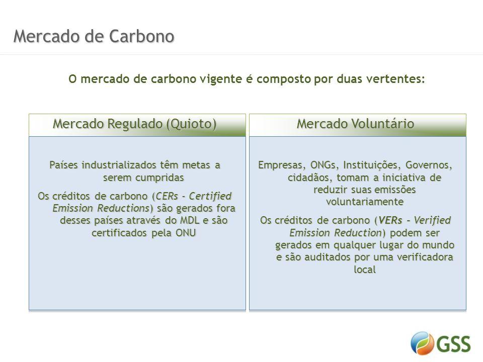 Ciclo de Projeto Ciclo de Projeto Estudo de Viabilidade Elaboração DCP Validação Aprovação Registro MonitoramentoVerificação Emissão CERs Estudo de Viabilidade Elaboração DCP Validação MonitoramentoVerificação Emissão VERs MDLVER