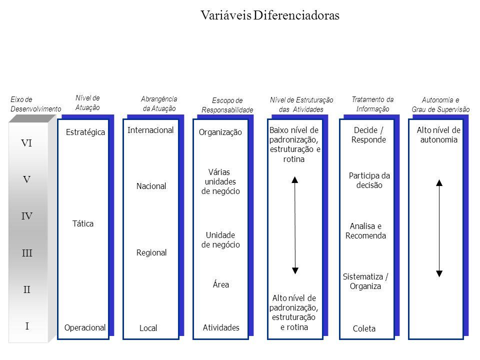 Baixo nível de autonomia Autonomia e Grau de Supervisão Eixo de Desenvolvimento Estratégica Tática Operacional Organização Várias unidades de negócio Unidade de negócio Área Atividades Baixo nível de padronização, estruturação e rotina Alto nível de padronização, estruturação e rotina Decide / Responde Participa da decisão Analisa e Recomenda Sistematiza / Organiza Coleta Nível de Atuação Escopo de Responsabilidade Nível de Estruturação das Atividades Tratamento da Informação Internacional Nacional Regional Local Abrangência da Atuação Alto nível de autonomia I II III IV V VI Variáveis Diferenciadoras