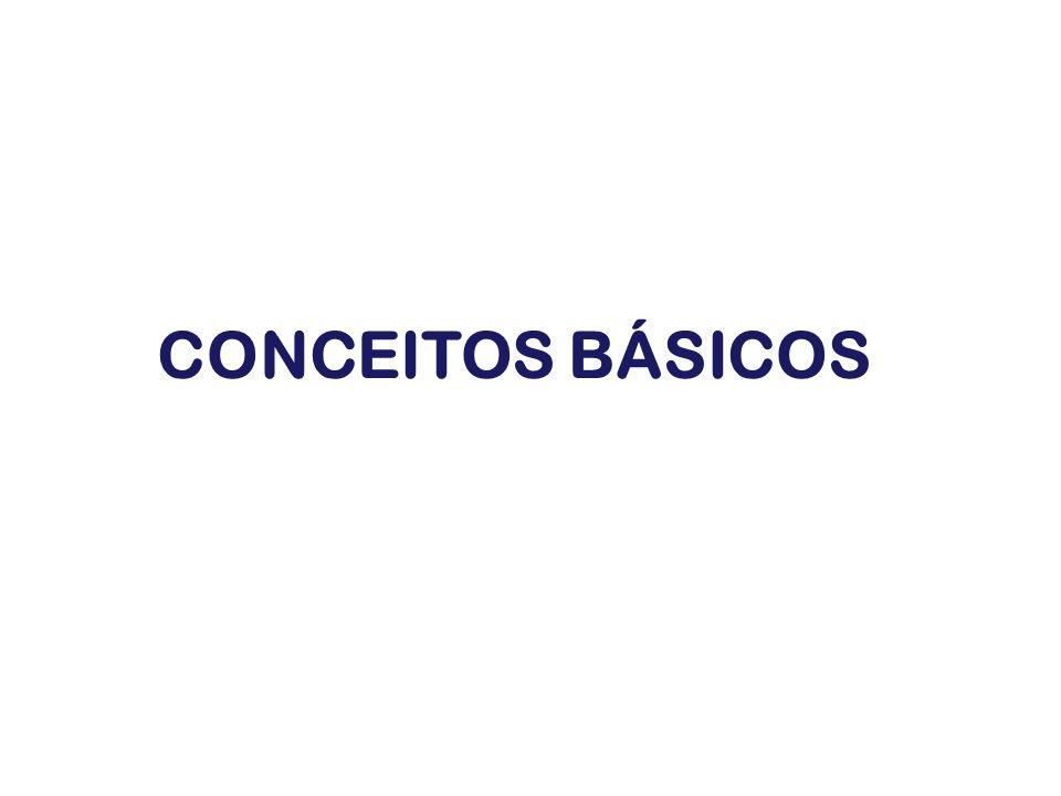 INPUTS OUTPUTS Conhecimentos Habilidades Atitudes CAPACIDADES Contribuição Agregação de Valor MOBILIZAÇÃO DAS CAPACIDADES Conceito de Competência