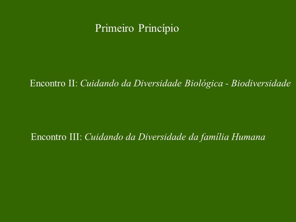 Referencial de Apoio Saber Cuidar – Leonardo Boff Ecologia Profunda – Arne Naess Biofilia – Edward Wilson