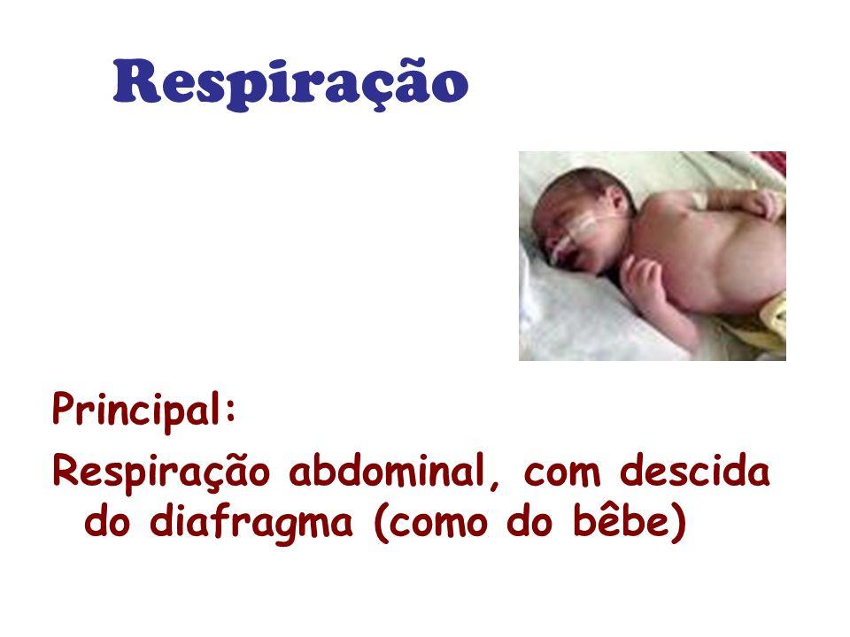 Respiração Principal: Respiração abdominal, com descida do diafragma (como do bêbe)