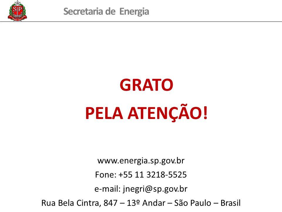 Secretaria de Energia GRATO PELA ATENÇÃO! www.energia.sp.gov.br Fone: +55 11 3218-5525 e-mail: jnegri@sp.gov.br Rua Bela Cintra, 847 – 13º Andar – São