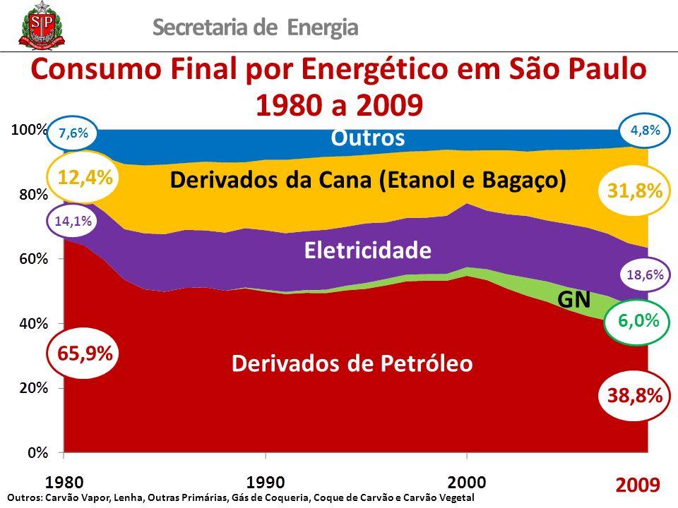 Secretaria de Energia Consumo Final por Energético em São Paulo 1980 a 2009 12,4% 7,6%14,1% 65,9% 31,8% 4,8%18,6% 38,8% 6,0% Derivados de Petróleo Der