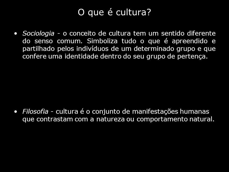 Sociologia - o conceito de cultura tem um sentido diferente do senso comum. Simboliza tudo o que é apreendido e partilhado pelos indivíduos de um dete