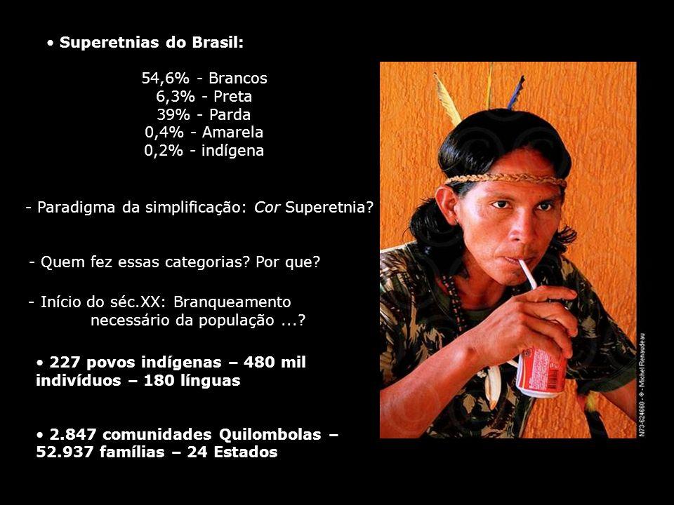 Superetnias do Brasil: 54,6% - Brancos 6,3% - Preta 39% - Parda 0,4% - Amarela 0,2% - indígena 227 povos indígenas – 480 mil indivíduos – 180 línguas
