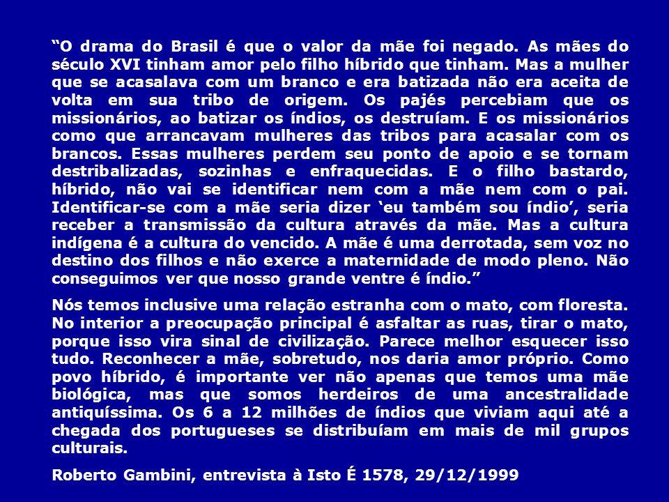 O drama do Brasil é que o valor da mãe foi negado. As mães do século XVI tinham amor pelo filho híbrido que tinham. Mas a mulher que se acasalava com