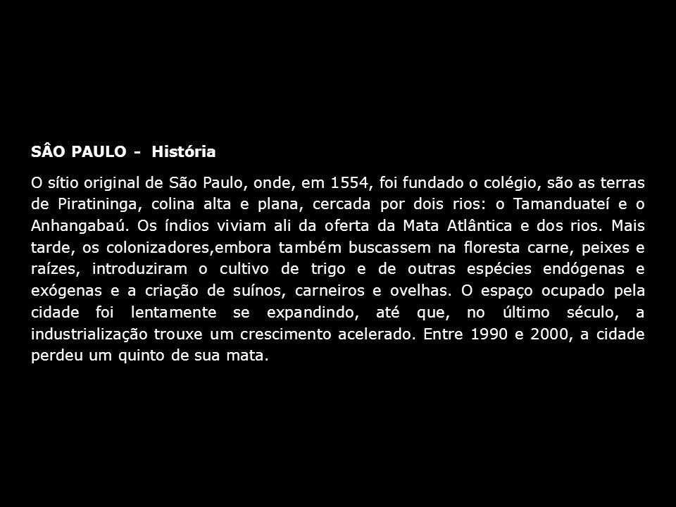 SÂO PAULO - História O sítio original de São Paulo, onde, em 1554, foi fundado o colégio, são as terras de Piratininga, colina alta e plana, cercada p