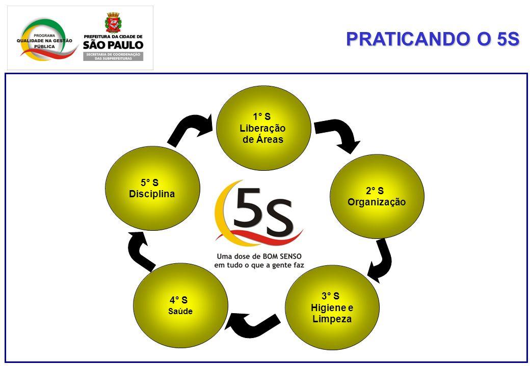 PRATICANDO O 5S 1° S Liberação de Áreas 2° S Organização 3° S Higiene e Limpeza 4° S Saúde 5° S Disciplina