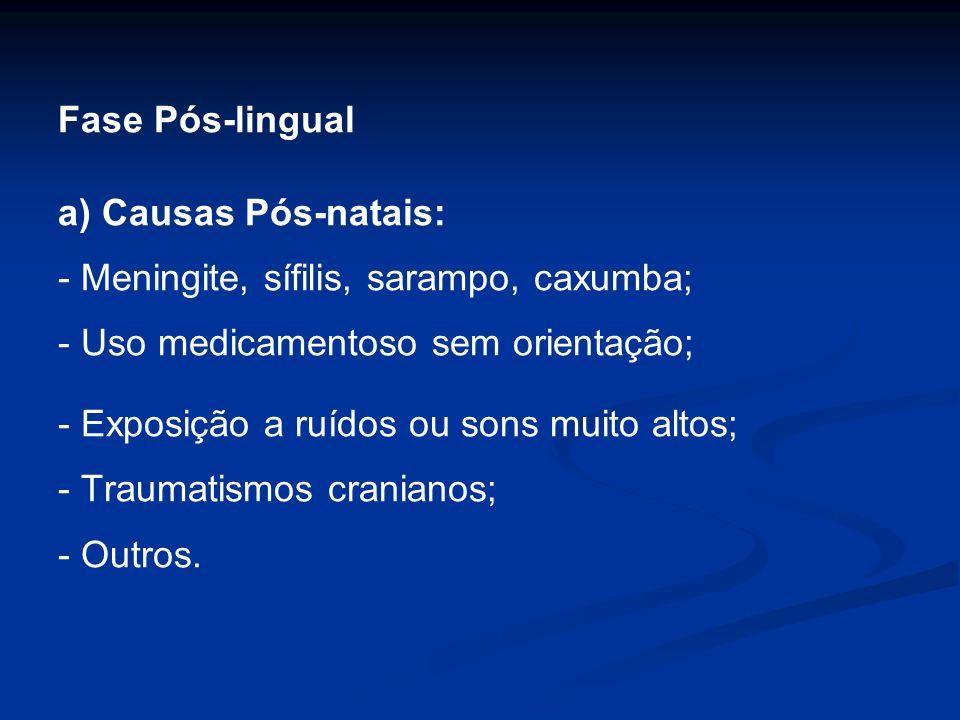 Fase Pós-lingual a) Causas Pós-natais: - Meningite, sífilis, sarampo, caxumba; - Uso medicamentoso sem orientação; - Exposição a ruídos ou sons muito
