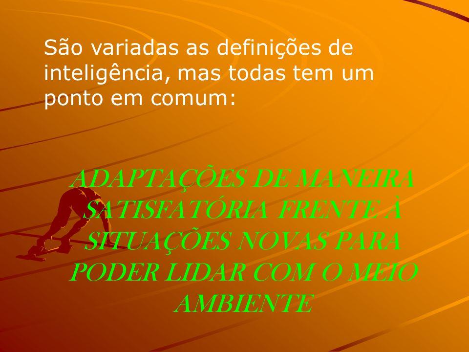São variadas as definições de inteligência, mas todas tem um ponto em comum: ADAPTAÇÕES DE MANEIRA SATISFATÓRIA FRENTE À SITUAÇÕES NOVAS PARA PODER LI