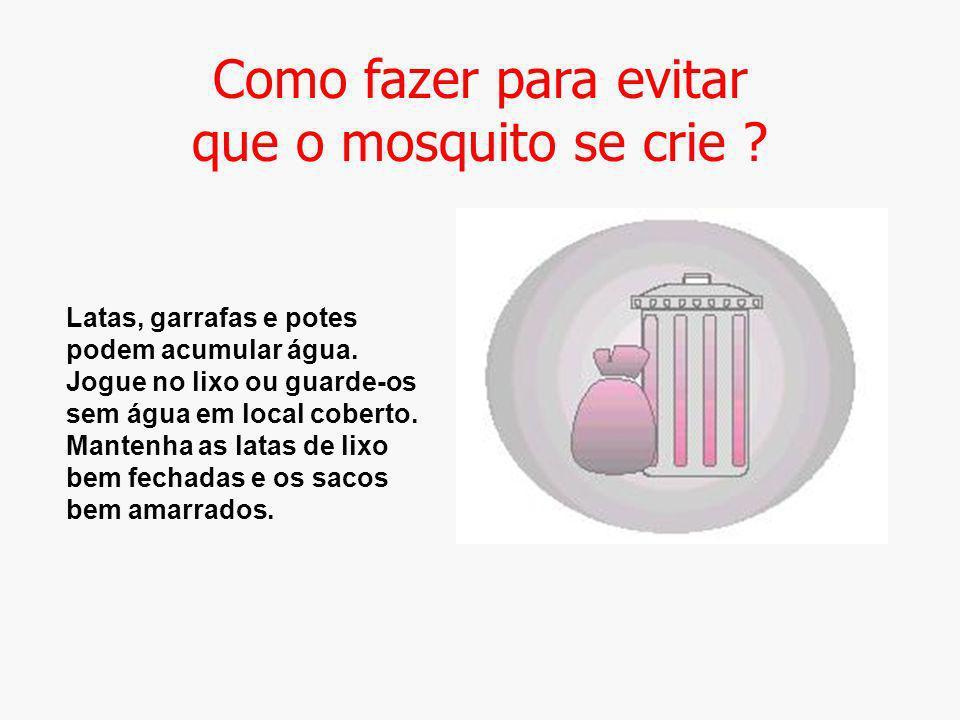 Como fazer para evitar que o mosquito se crie ? Latas, garrafas e potes podem acumular água. Jogue no lixo ou guarde-os sem água em local coberto. Man