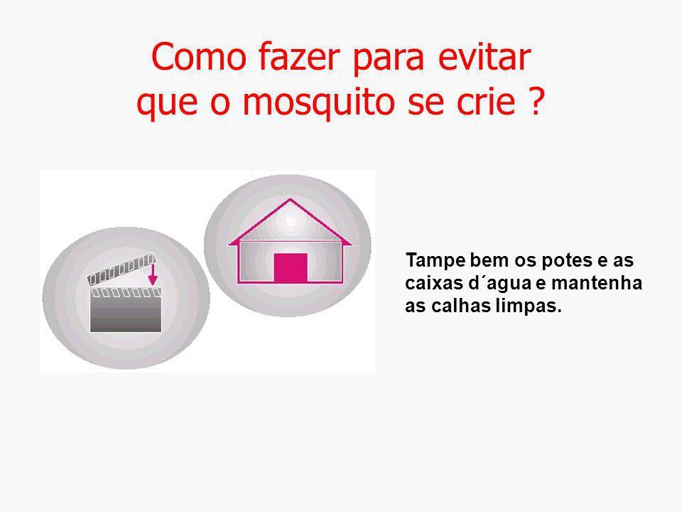 Como fazer para evitar que o mosquito se crie ? Tampe bem os potes e as caixas d´agua e mantenha as calhas limpas.