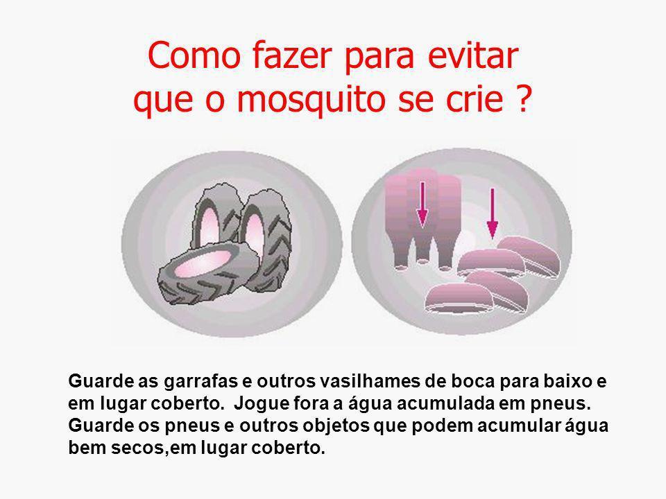 Como fazer para evitar que o mosquito se crie ? Guarde as garrafas e outros vasilhames de boca para baixo e em lugar coberto. Jogue fora a água acumul