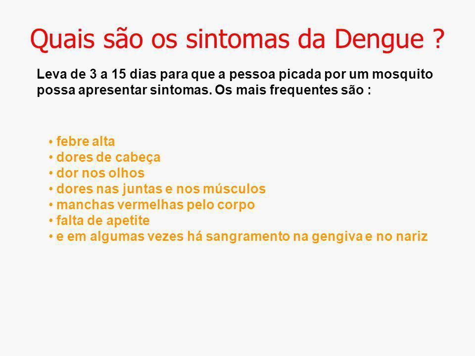 Quais são os sintomas da Dengue ? Leva de 3 a 15 dias para que a pessoa picada por um mosquito possa apresentar sintomas. Os mais frequentes são : feb