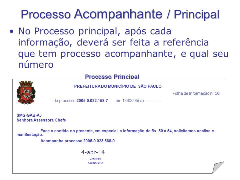 Processo Principal ROSEANE ZANELLI No Processo principal, após cada informação, deverá ser feita a referência que tem processo acompanhante, e qual se
