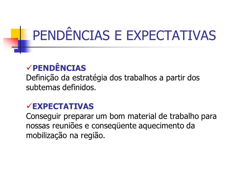 PENDÊNCIAS E EXPECTATIVAS PENDÊNCIAS Definição da estratégia dos trabalhos a partir dos subtemas definidos.