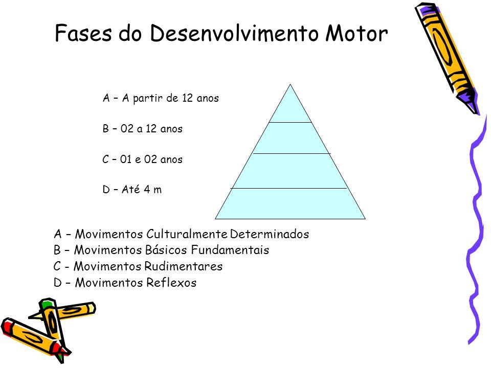 Fases do Desenvolvimento Motor A – A partir de 12 anos B – 02 a 12 anos C – 01 e 02 anos D – Até 4 m A – Movimentos Culturalmente Determinados B – Mov