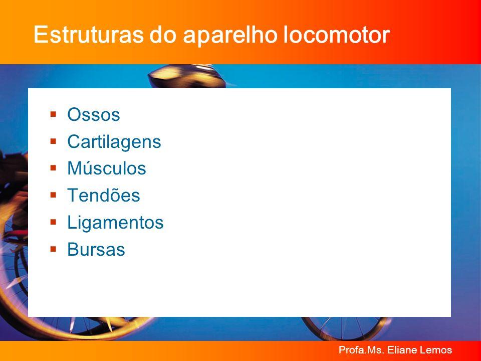 Profa.Ms. Eliane Lemos Estruturas do aparelho locomotor Ossos Cartilagens Músculos Tendões Ligamentos Bursas