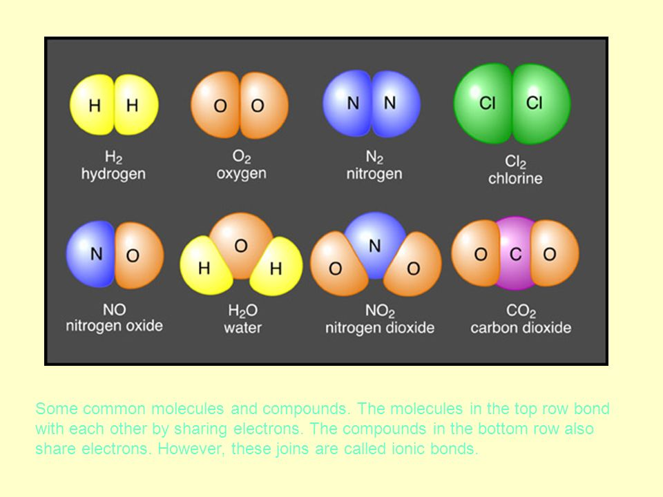 Some common molecules and compounds. The molecules in the top row bond with each other by sharing electrons. The compounds in the bottom row also shar