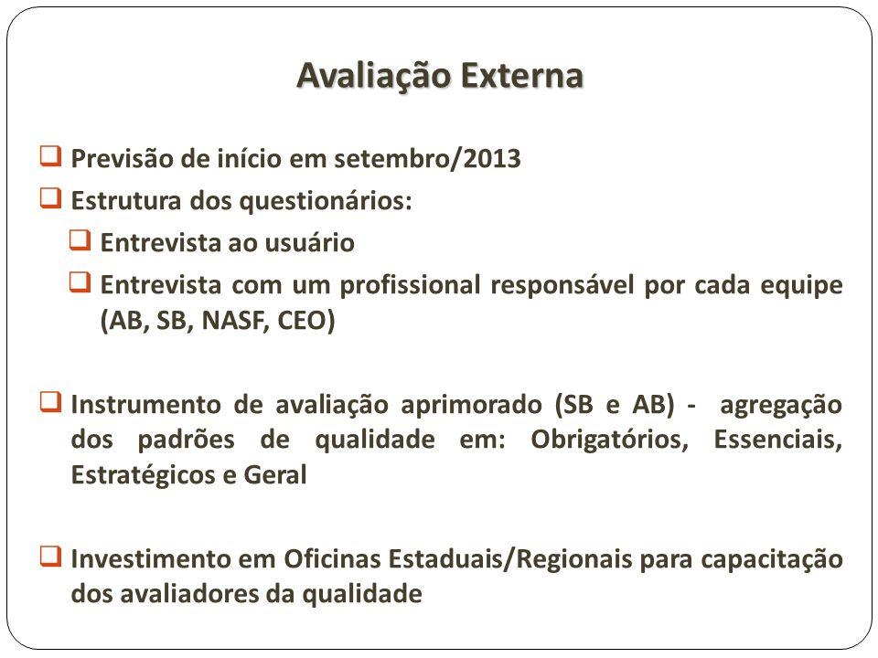 Avaliação Externa Previsão de início em setembro/2013 Estrutura dos questionários: Entrevista ao usuário Entrevista com um profissional responsável po