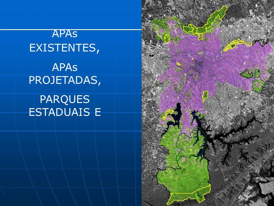 Programa de arborização urbana Prazos reduzidos para execução do plantio Procedimento diferenciado para solicitação do cadastro de interferências