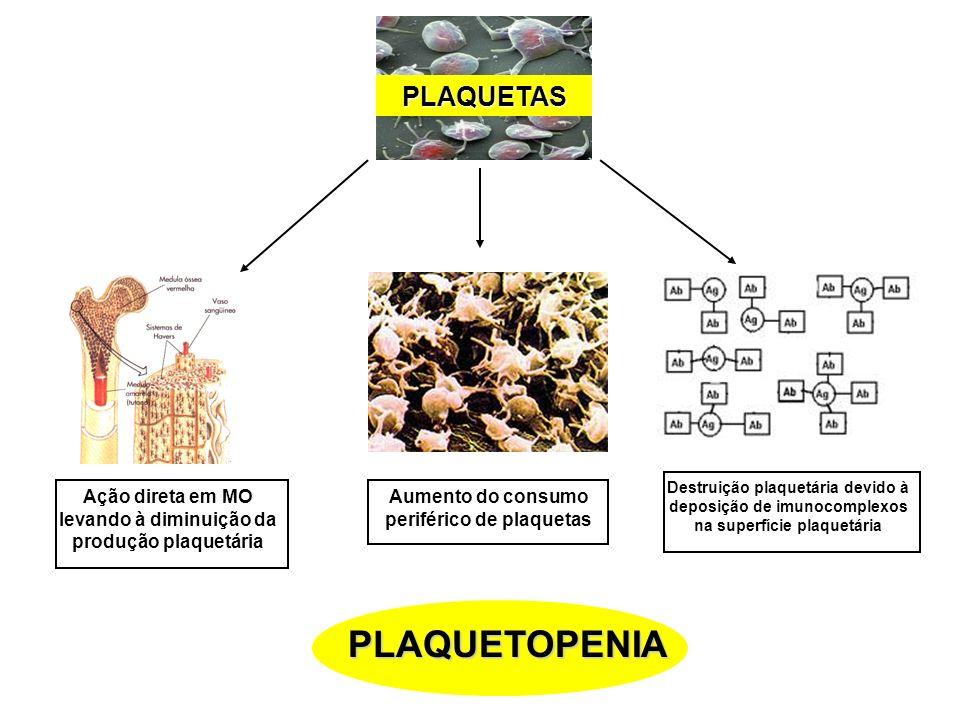 PLAQUETAS Ação direta em MO levando à diminuição da produção plaquetária Aumento do consumo periférico de plaquetas Destruição plaquetária devido à de