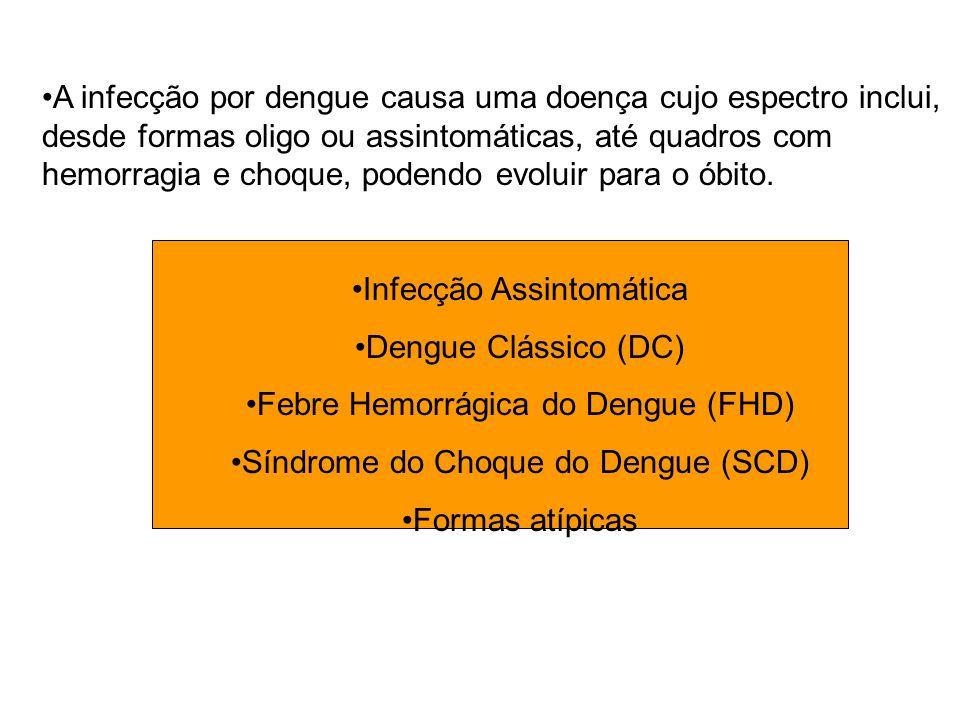 A infecção por dengue causa uma doença cujo espectro inclui, desde formas oligo ou assintomáticas, até quadros com hemorragia e choque, podendo evolui