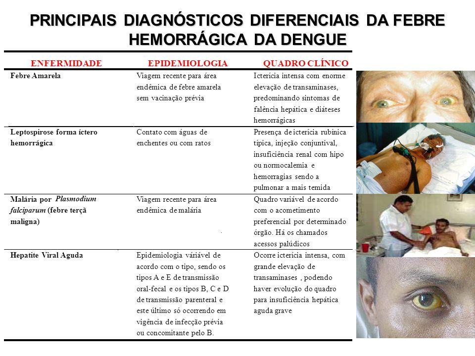 ENFERMIDADEEPIDEMIOLOGIAQUADRO CLÍNICO Febre AmarelaViagem recente para área endêmica de febre amarela sem vacinação prévia Icterícia intensa com enor