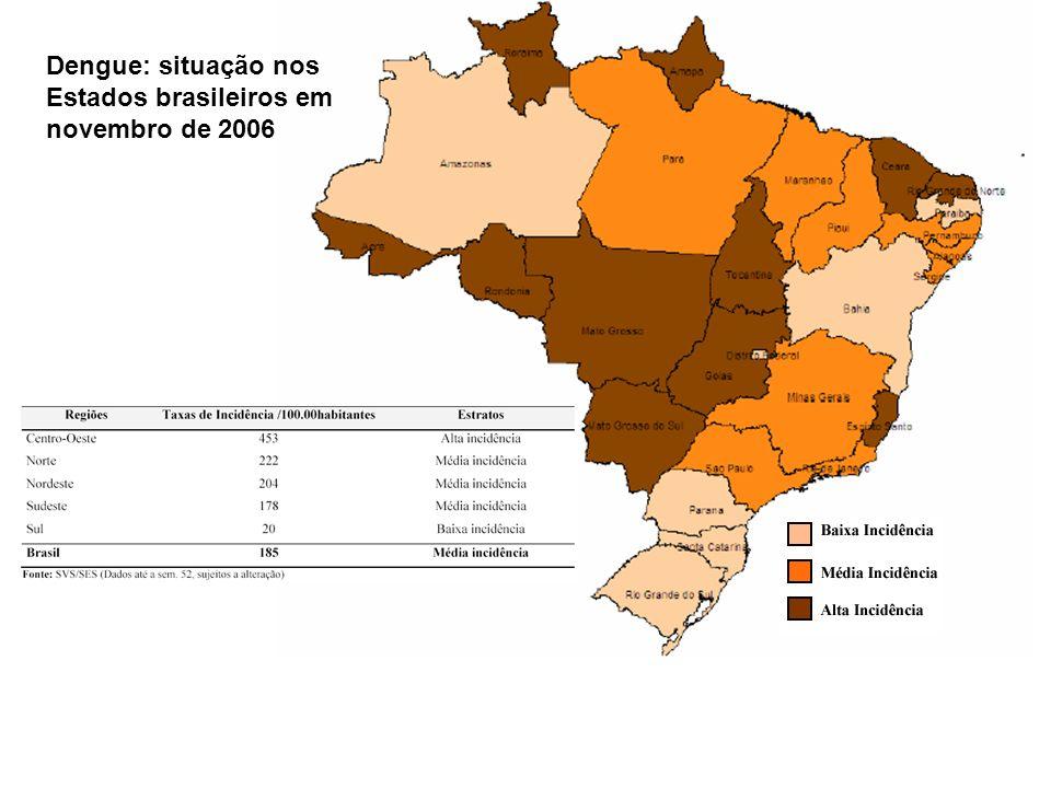 Dengue: situação nos Estados brasileiros em novembro de 2006