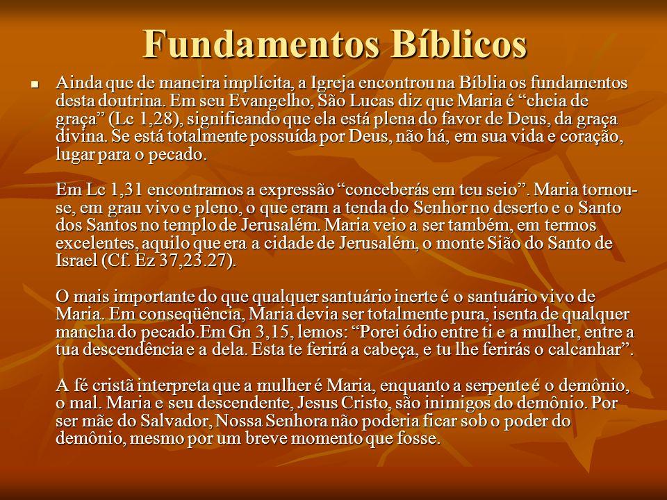 Fundamentos Bíblicos Ainda que de maneira implícita, a Igreja encontrou na Bíblia os fundamentos desta doutrina. Em seu Evangelho, São Lucas diz que M