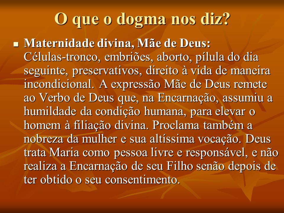 O que o dogma nos diz? Maternidade divina, Mãe de Deus: Células-tronco, embriões, aborto, pílula do dia seguinte, preservativos, direito à vida de man