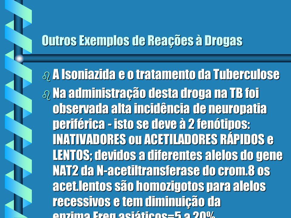 Outros Exemplos de Reações à Drogas b A Isoniazida e o tratamento da Tuberculose b Na administração desta droga na TB foi observada alta incidência de