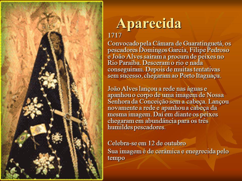 Aparecida Aparecida 1717 1717 Convocado pela Câmara de Guaratinguetá, os pescadores Domingos Garcia, Filipe Pedroso e João Alves saíram a procura de p