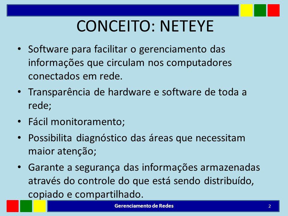 CONCEITO: NETEYE Software para facilitar o gerenciamento das informações que circulam nos computadores conectados em rede. Transparência de hardware e