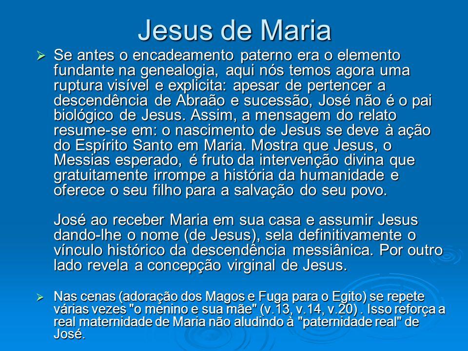 Jesus de Maria Se antes o encadeamento paterno era o elemento fundante na genealogia, aqui nós temos agora uma ruptura visível e explicita: apesar de