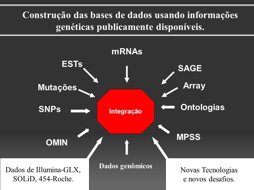 Construção das bases de dados usando informações genéticas publicamente disponíveis. Integração ESTs mRNAs SAGE Dados genômicos SNPs Ontologias OMIN M
