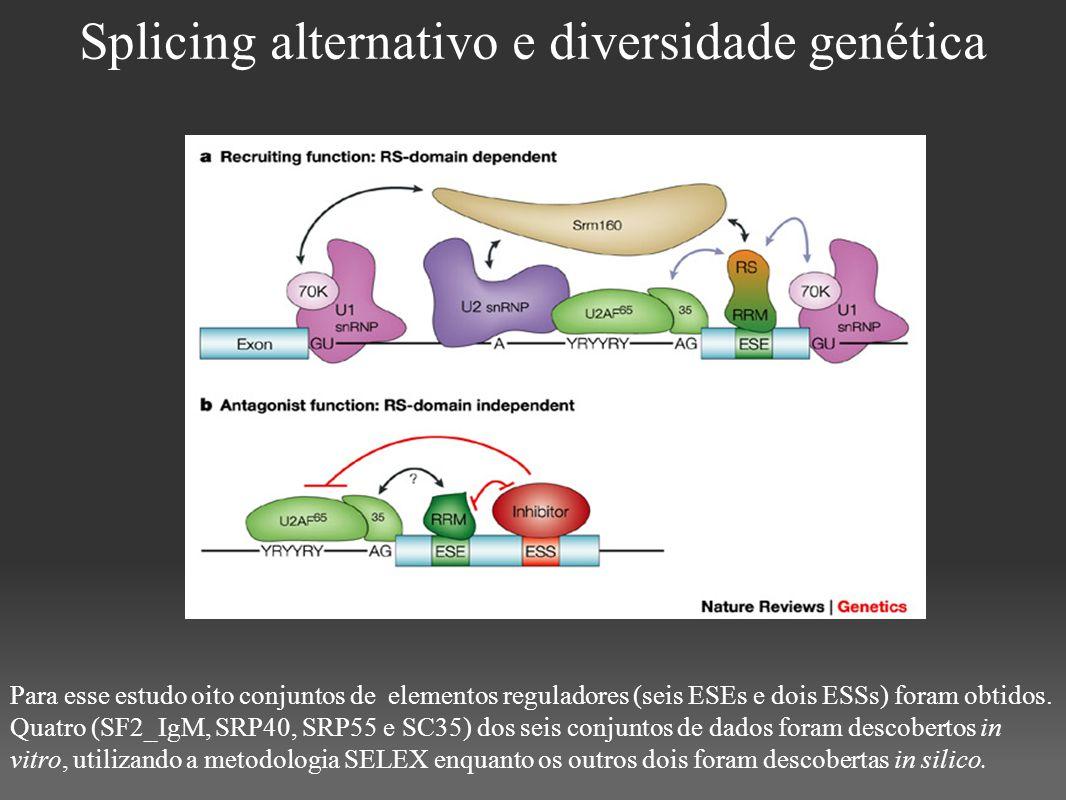 Splicing alternativo e diversidade genética Para esse estudo oito conjuntos de elementos reguladores (seis ESEs e dois ESSs) foram obtidos. Quatro (SF