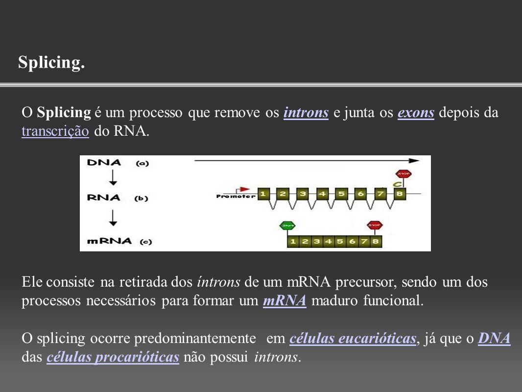 Splicing. O Splicing é um processo que remove os introns e junta os exons depois da transcrição do RNA.intronsexons transcrição Ele consiste na retira